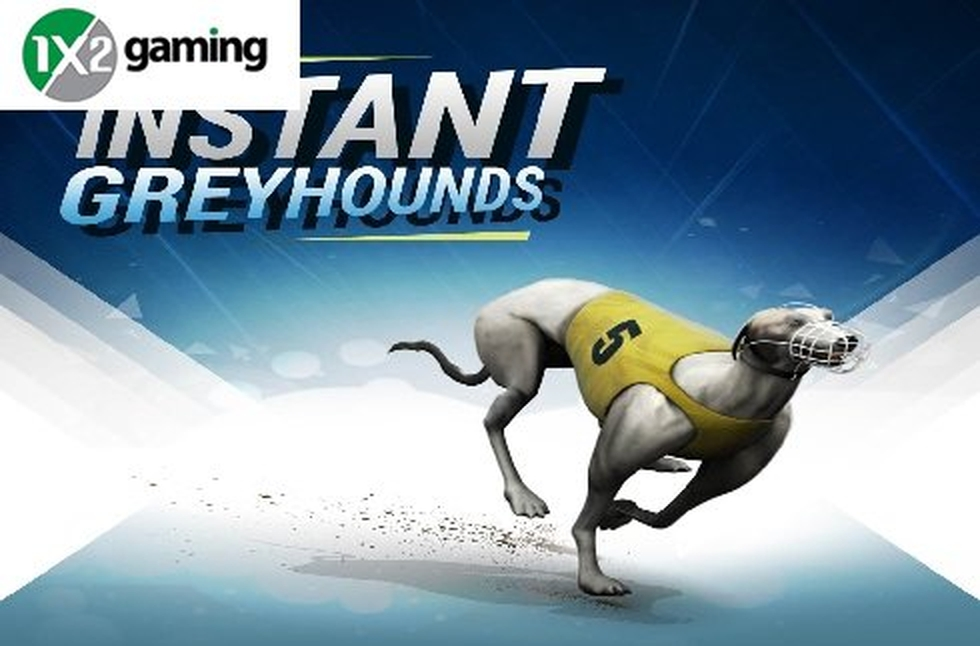 The Instant Virtual Greyhounds Online Slot Demo Game by 1x2 Gaming