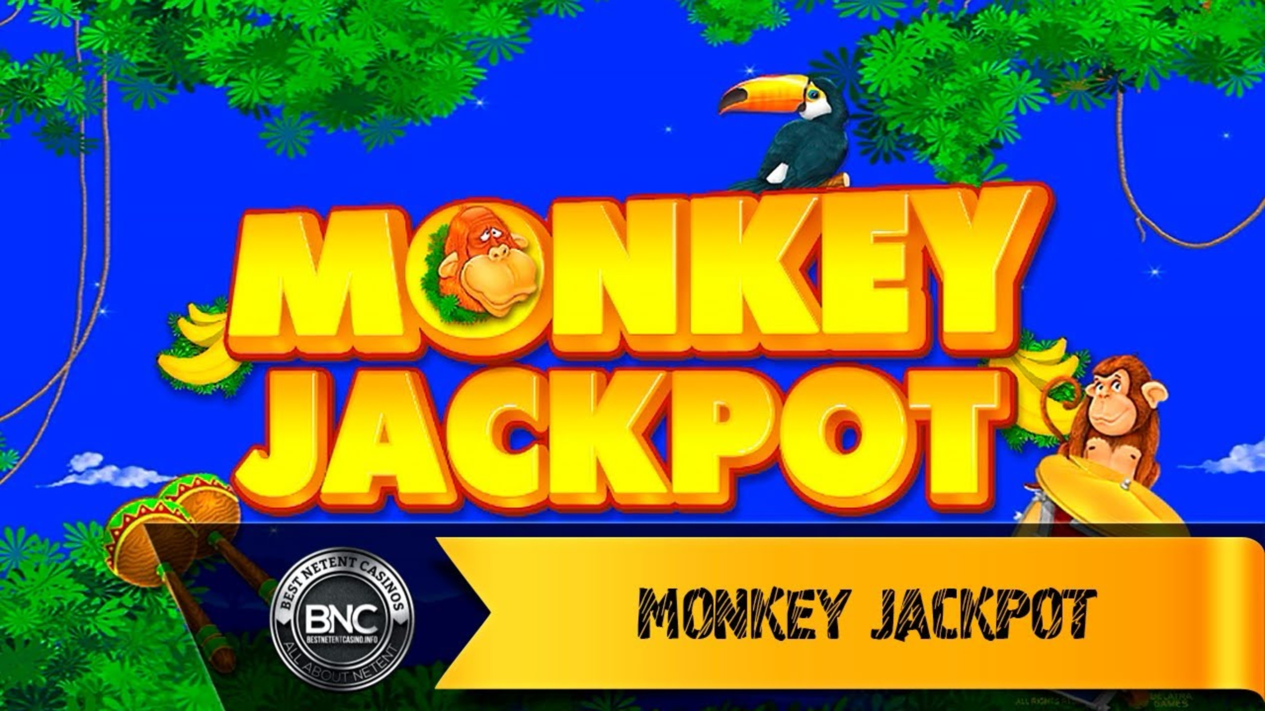 The Monkey Jackpot Online Slot Demo Game by Belatra Games