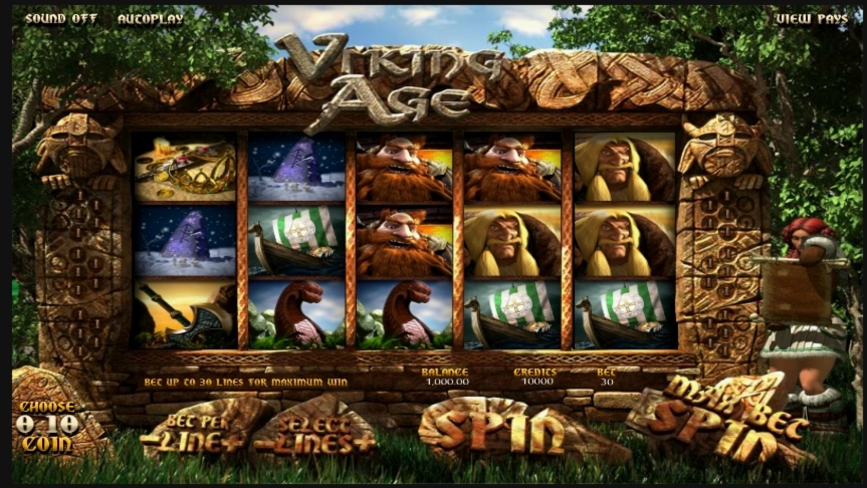Reels in Viking Age Slot Game by Betsoft