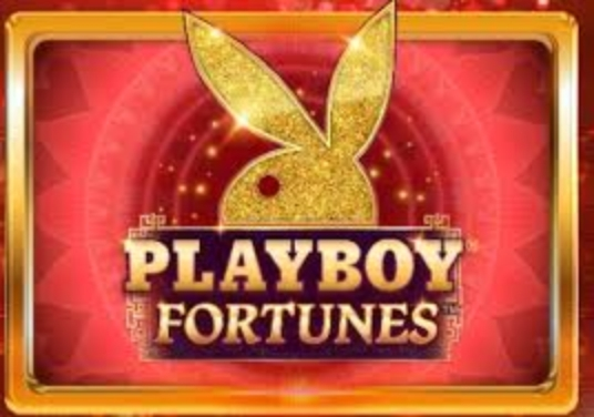 The Playboy Fortunes Online Slot Demo Game by Gameburger Studios