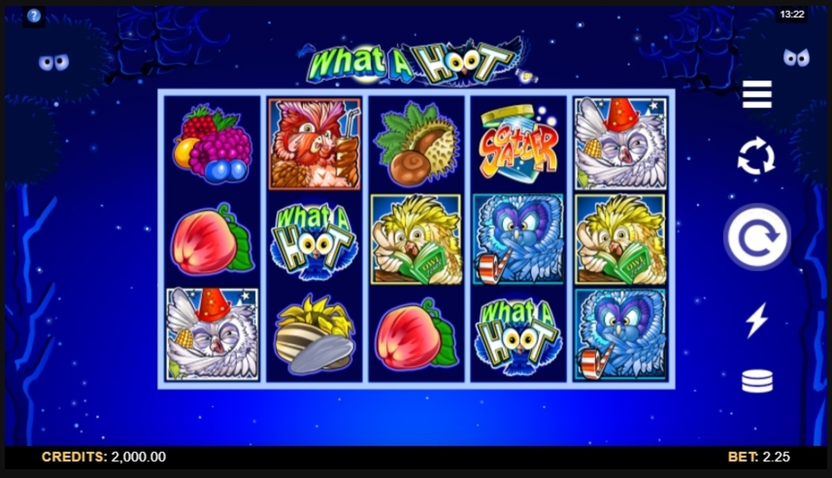 Reels in What a Hoot Slot Game by Microgaming