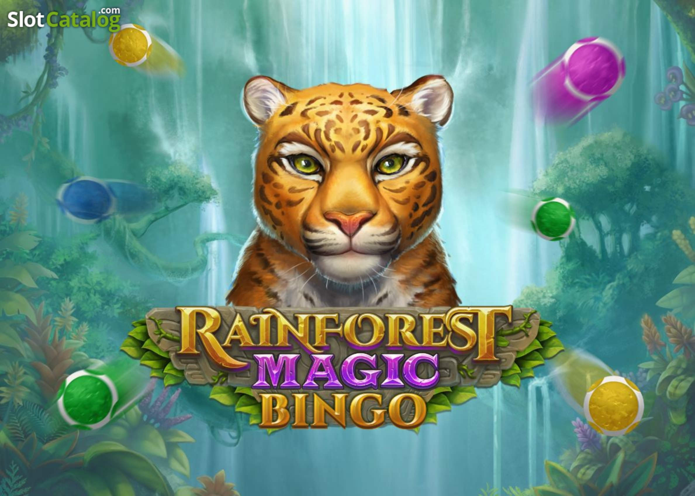 Info of Rainforest Magic Bingo Slot Game by Playn GO