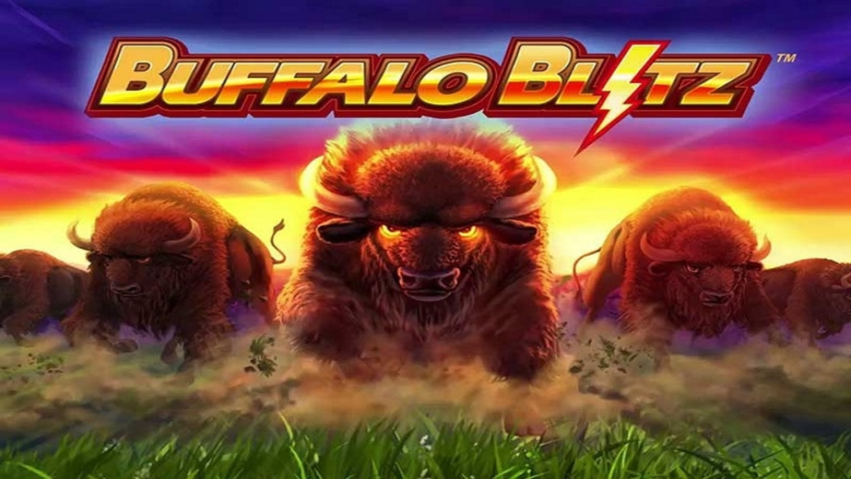 The Buffalo Blitz Online Slot Demo Game by Playtech