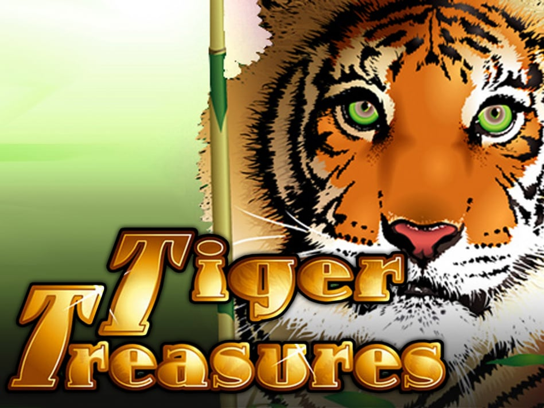 The Tiger Treasures Online Slot Demo Game by RTG
